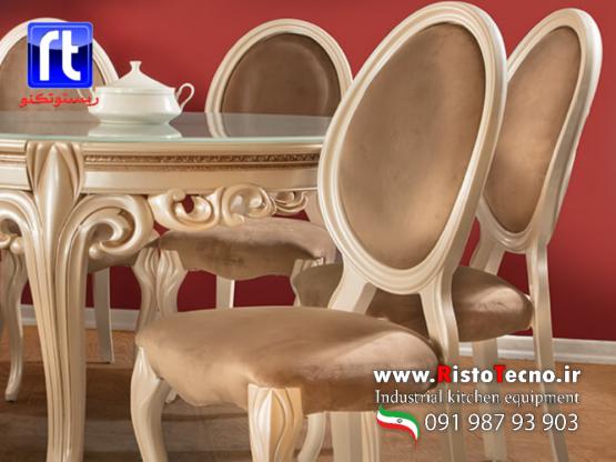 صندلی پلیمری پانیذ